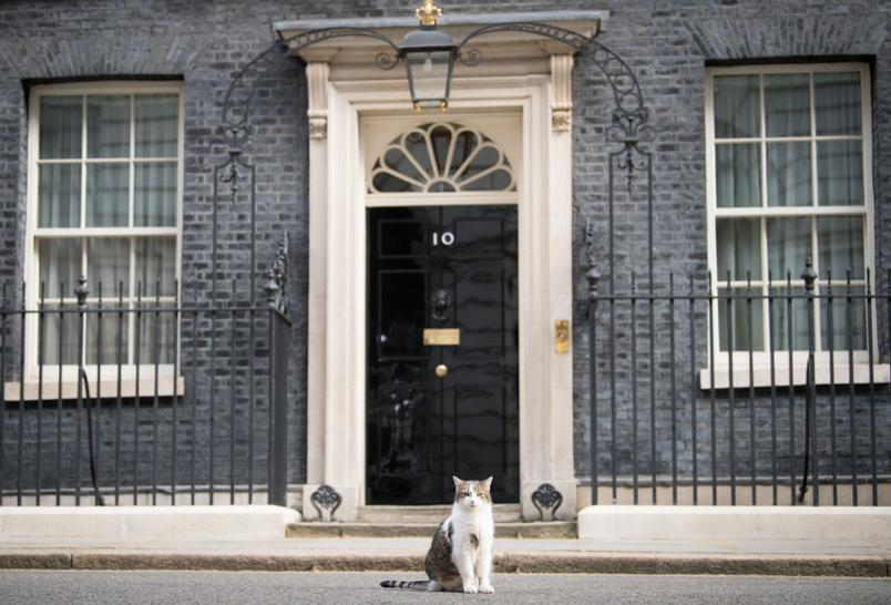 The official residence of Boris Johnson is at 10 Downing Street