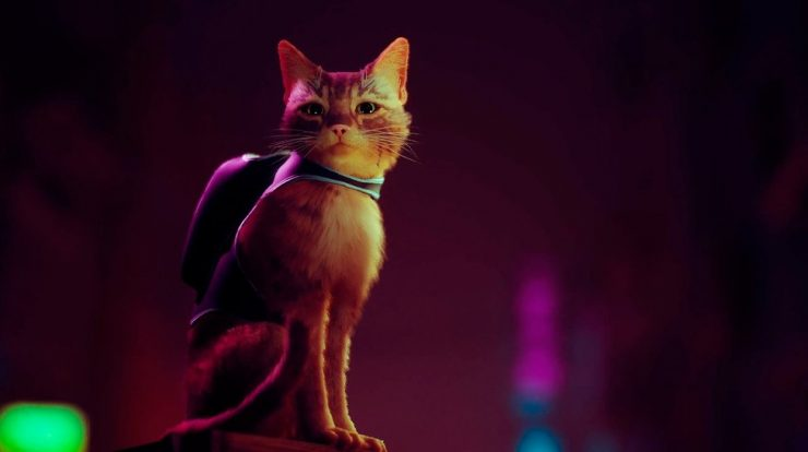 Stray: The game that pits you against a cat that wins the game play and arrives in 2022