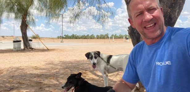 Briton flees Kabul with 170 dogs and cats, but no NGO team