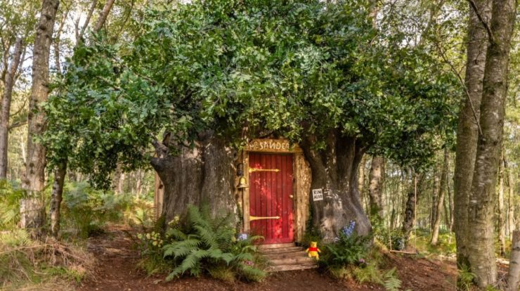 Winnie the Pooh wooden house for rent in the UK;  See photos International Destinations
