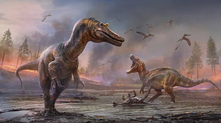 Fossils reveal two new species of dinosaurs in the UK