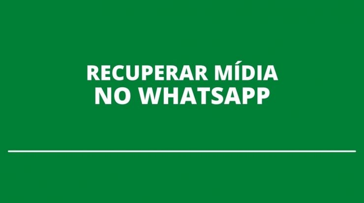 Where is the WhatsApp trash?  Learn how to recover your files